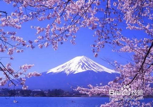 株洲日语培训班樱花社富士山